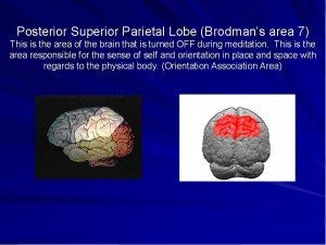 Brodman's area 7, spiritual neuroscience, near death experiences, out of body states, consciousness, Melvin Morse