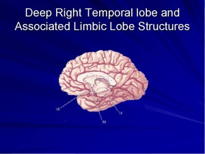 The Deep Temporal Lobe, when stimulated creates near death like experiences, consciousness outside of the brain, out of body states