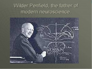 Wilder Penfield Father of Modern Neuroscience Consciousness Near Death Experience Spiritual Neuroscience