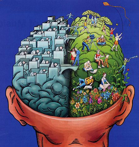 Left brain, right brain, science, spirituality, consciousness
